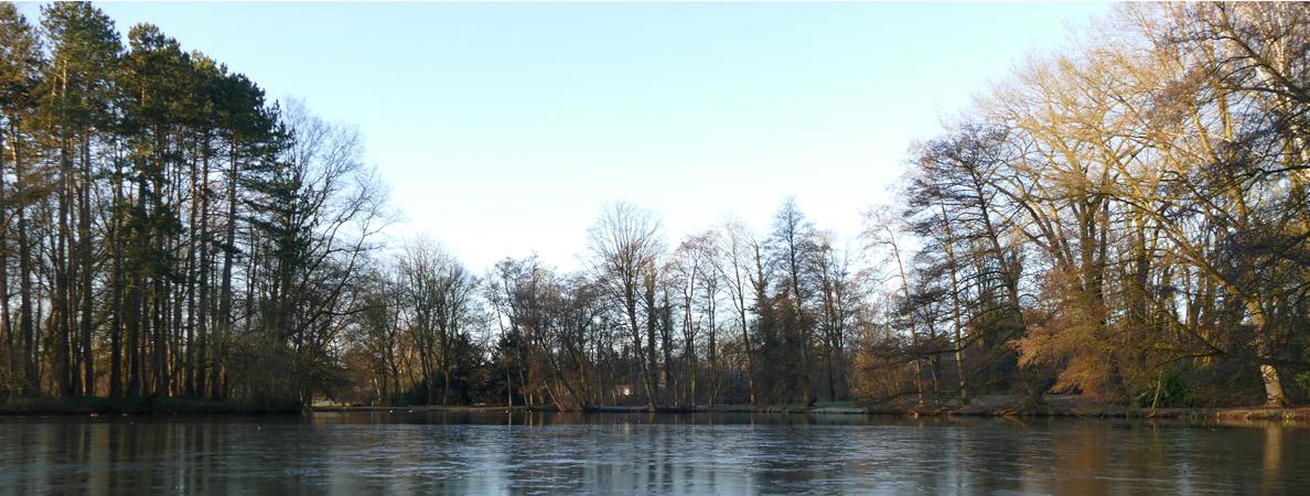 Stadtpark Teich Banner Winter