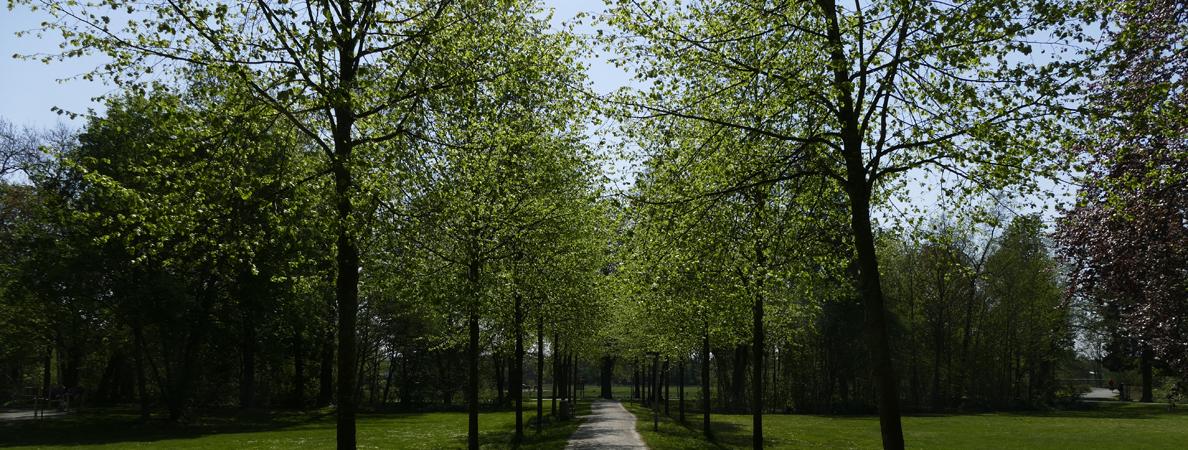 Stadtpark Frühling